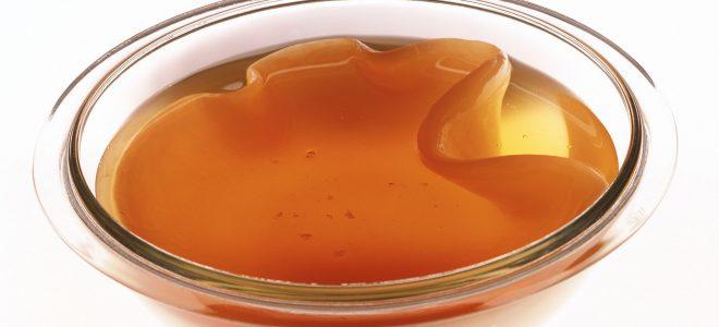 Польза чайного гриба для печени