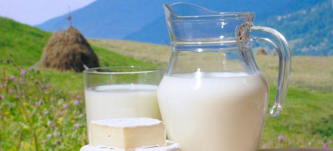 Полезно ли молоко для печени?