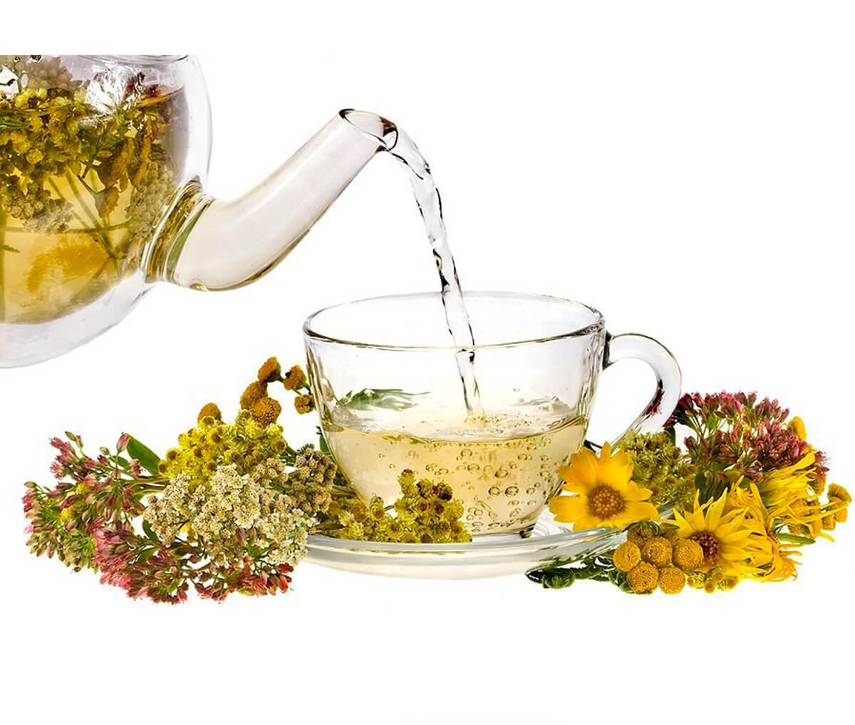 сбор чая рецепты