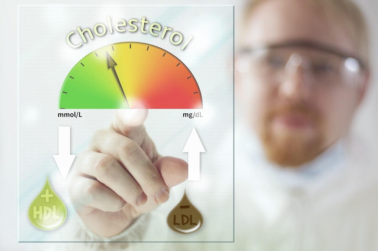Пониженный холестерин в крови у мужчин и женщин (что значит)