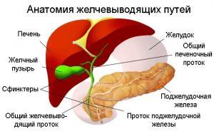 Гепатит а чем опасен
