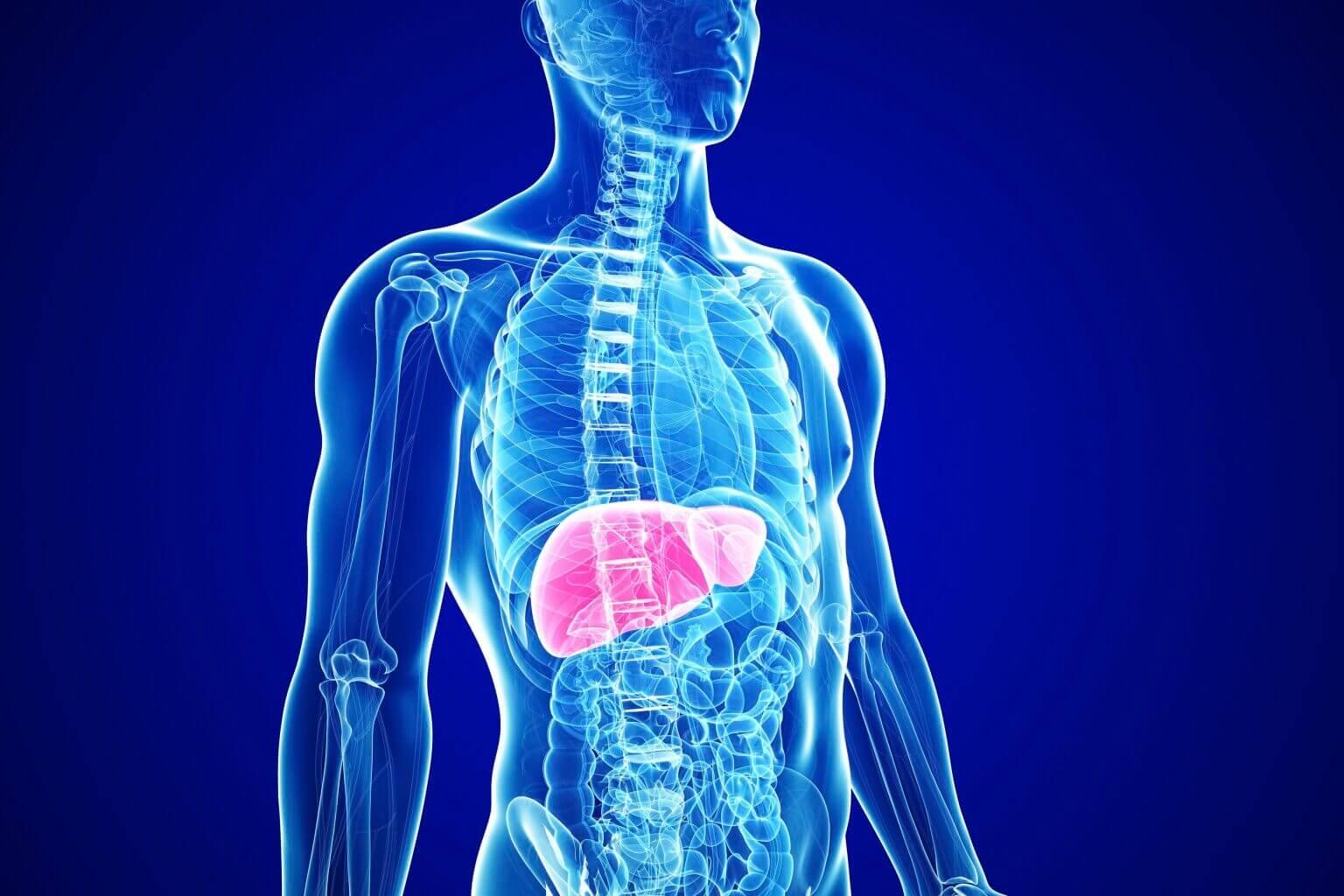 Гепатит неясной этиологии что это лечение