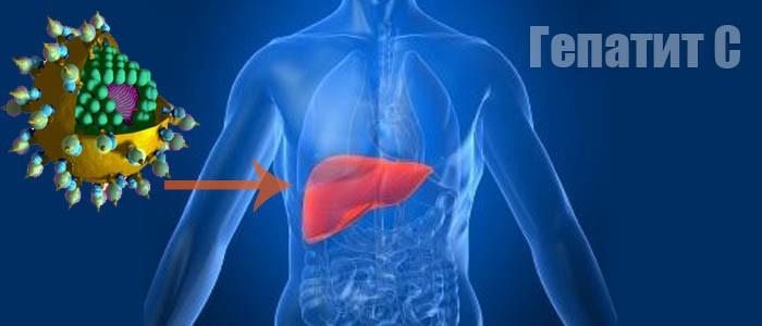 холестерин крови гепатит в