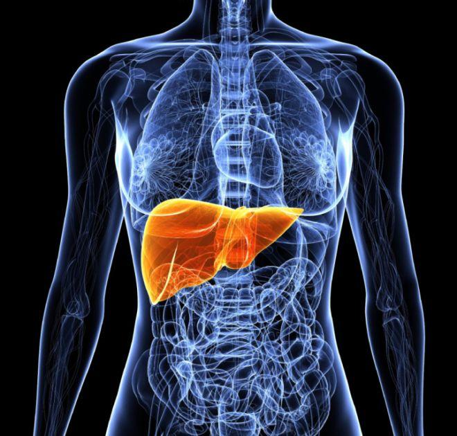 Медикаментозный гепатит что это такое