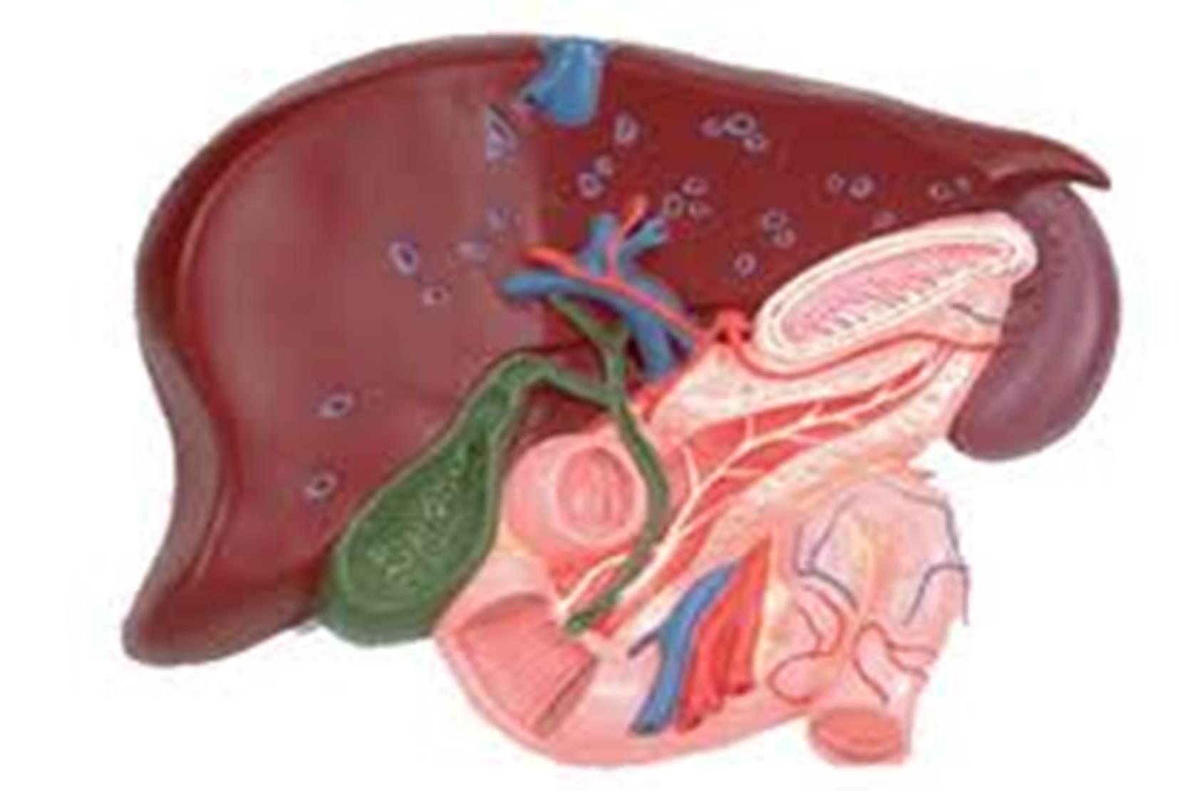 Нарушение процессов реполяризации желудочков