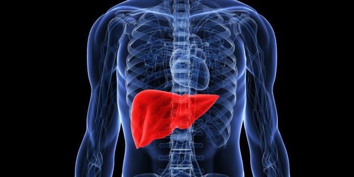 Лечение гепатита в препараты