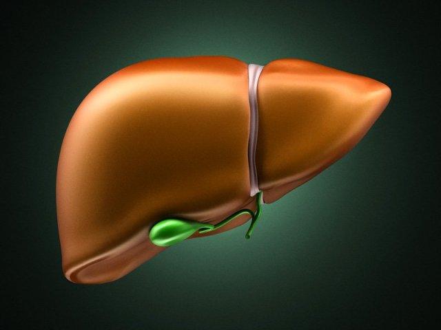 Возможные заболевания печени