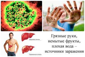 Переносчики гепатита