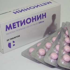Препараты для лечения стеатоза печени